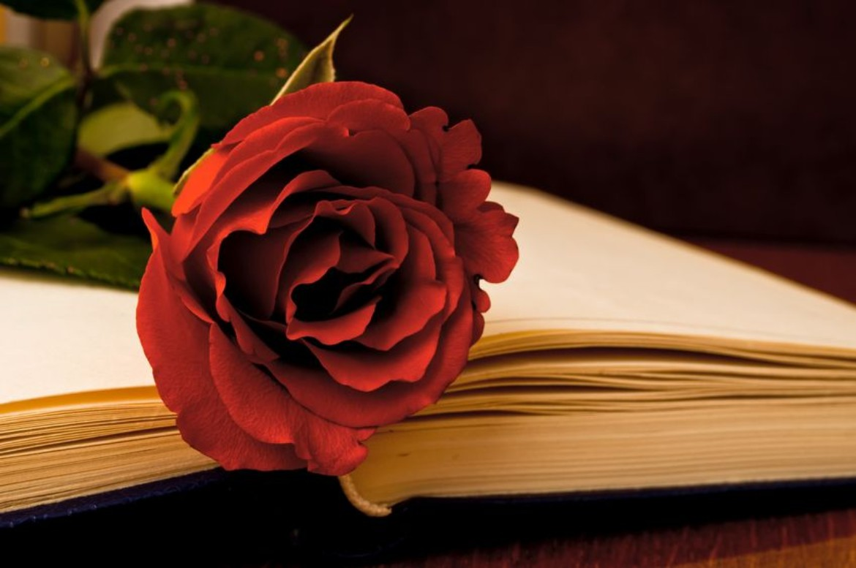 poems for a special grandma