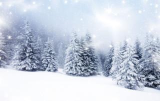 winter alliterative poem