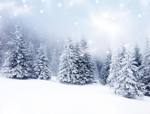 Winter Alliterative Poem | Alliteration Examples