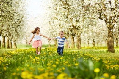 spring alliteration poems