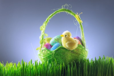 52433736 - easter background with chicken and eggs