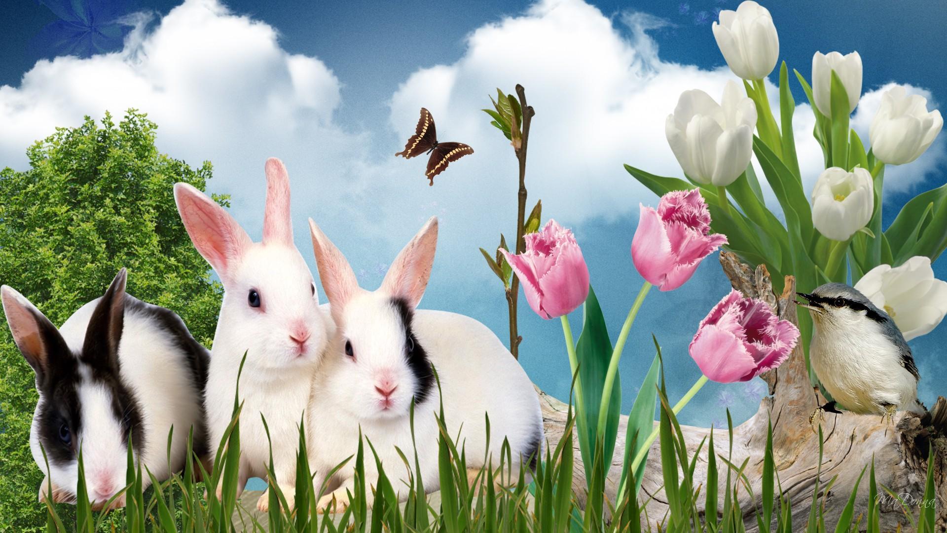 easter bunnies poems songs