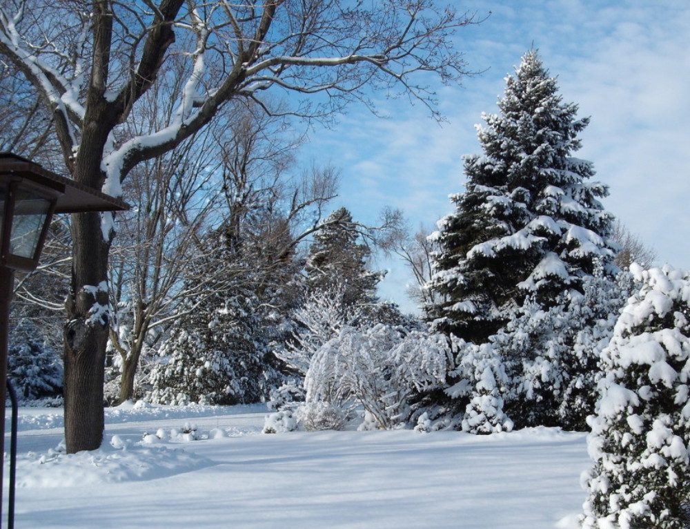 Imagery Examples | Classic Winter Snow Themed Poems