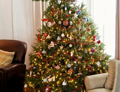 Christmas Tree   Give a Christmas Tree   Order Online